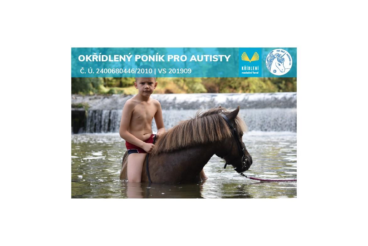 Okřídlený poník pro autisty/2020